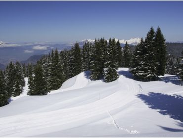 Ski region Le Grand Massif-14