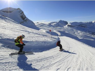 Ski region Le Grand Massif-8