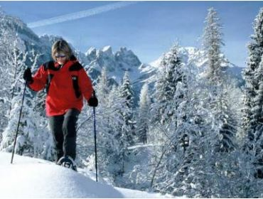 Ski village Charming Italian winter-sport village with several activities-5