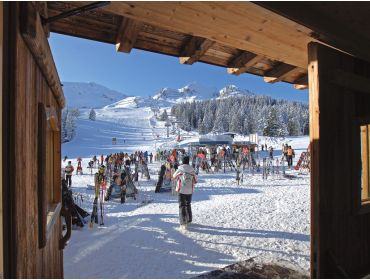 Ski village Quiet and centrally located village, nearby Kaltenbach-4