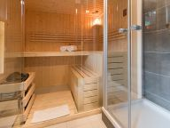 Chalet-apartment Haus Pur topfloor with private sauna