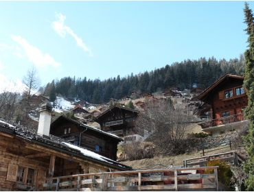Ski village Beautiful, authentic winter-sport village with a ski area-27