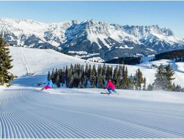 Ski village Child-friendly winter-sport village; perfect for beginners-2