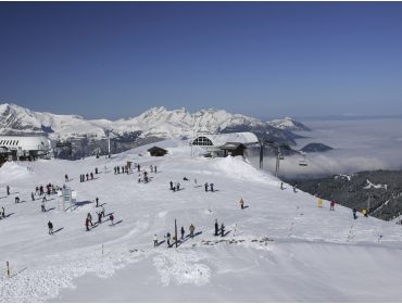 Ski region Le Grand Massif-15