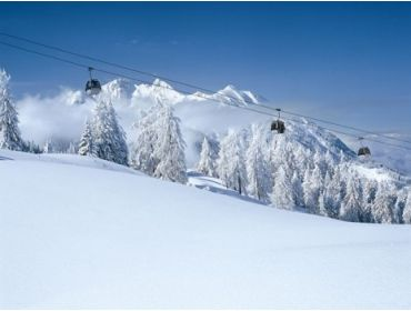 Ski village Winter sports destination with an extensive offer in facilities-3