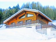 Chalet Les Etoiles with sauna and outside jacuzzi