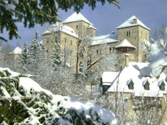 Schloss am See Fischhorn WEEKENDSKI Thursday to Sunday, combination of 6 apartments