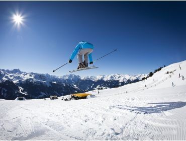 Ski village Cosy winter sport village, situated in the heart of the Zillertal-9
