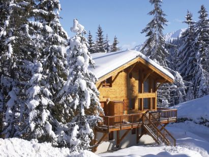 Chalet Dame Blanche with catering and outside Jacuzzi