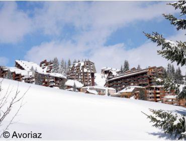 Ski village Most snow-certain winter sport village of Les Portes du Soleil-8